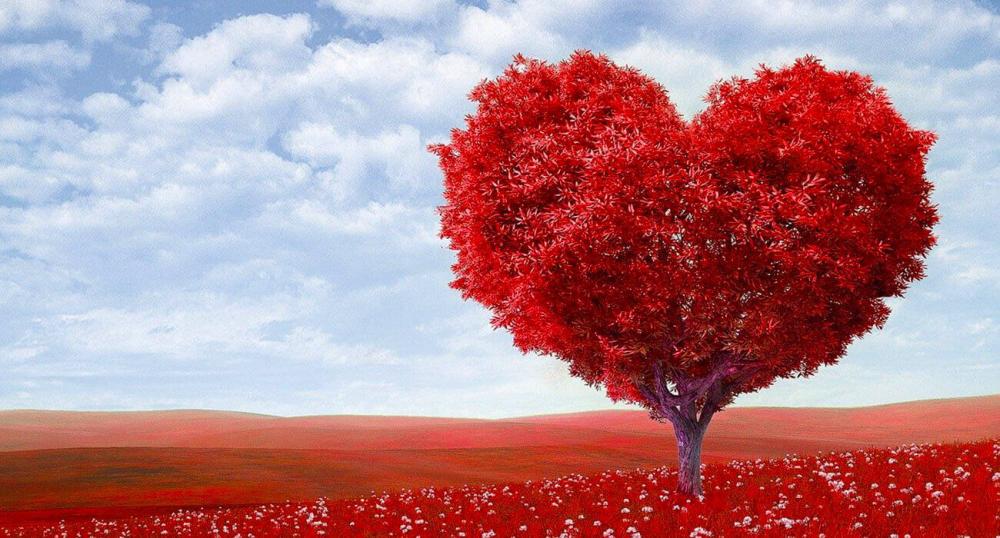 Подарок на День святого Валентина. Гаджеты