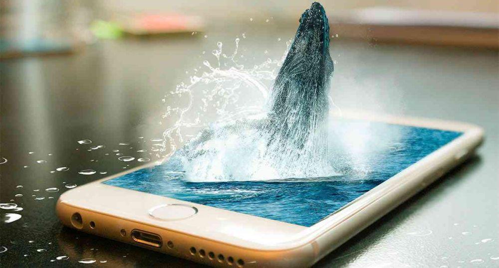 5 мифов о современных смартфонах и гаджетах
